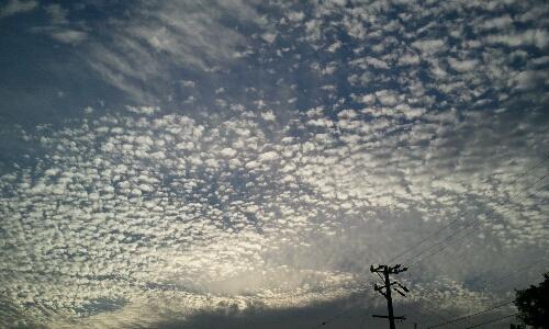 20110611091939.jpg
